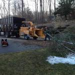 Tree removal.  East Granby, CT