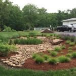 Rain garden designed and installed by McClean in Farmington CT.